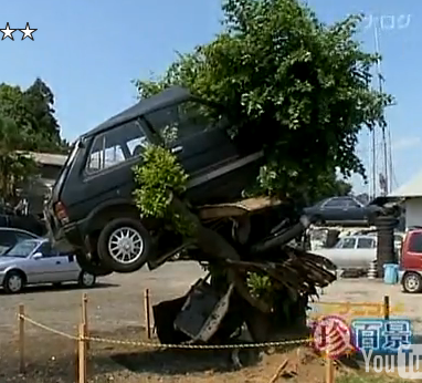 Japanese Car Tree