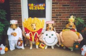 perros-macdonal
