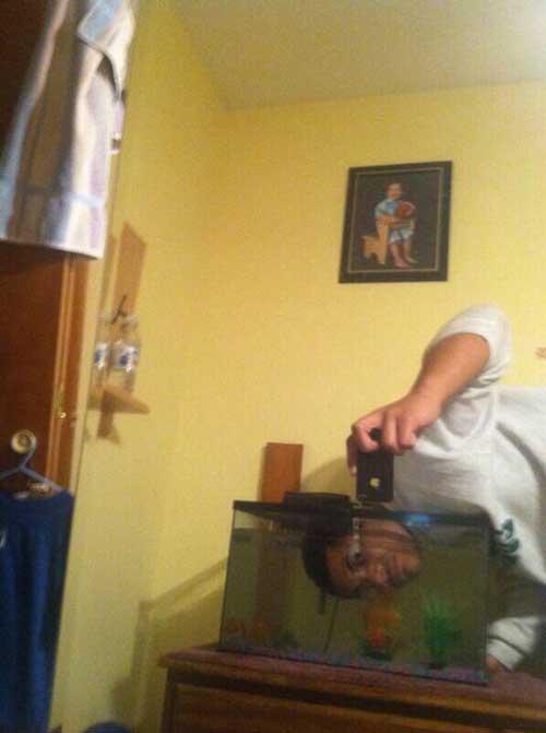 selfie-olympics-fishtank